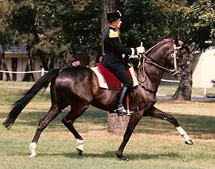 History of French Equitation - Part I: Dressage a la Francaise