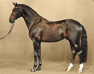 2016 Psi Auction Horse In The Spotlight Ferrari