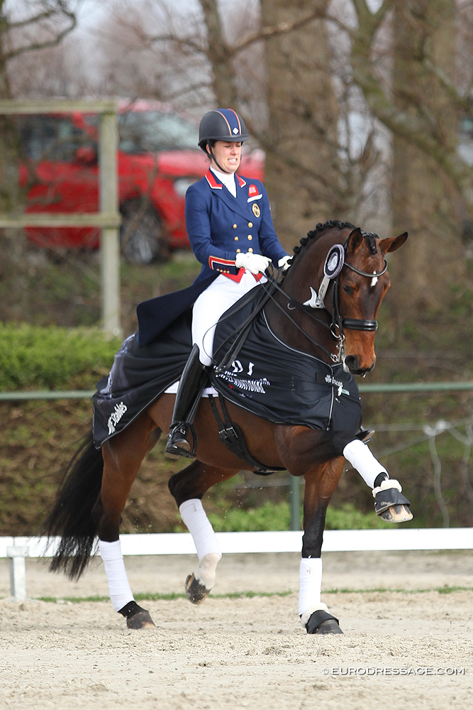 No 2018 cdio rotterdam for dujardin and hester for Dujardin 2018
