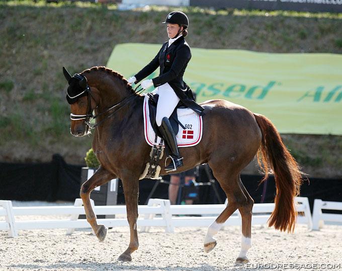 Danish Team Selected for 2019 CDIO Uggerhalne