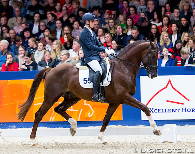 Vermunt and Bruinier Strike at Platinum Stable Blow-out Sale