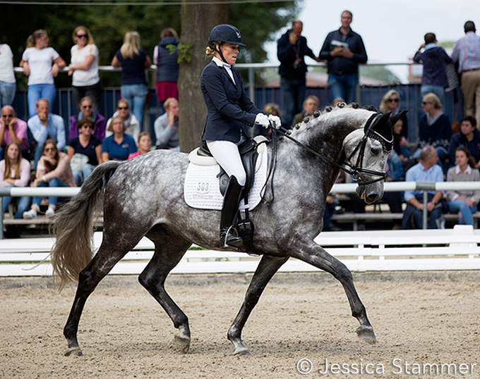 Andrea Muller-Kersten's Ride Di Magic Sold to Switzerland