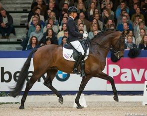 Annemarie Brouwer and Electron at the 2015 KWPN Stallion Show :: Photo © Dirk Caremans