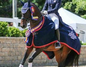 Avesto Wins the 2015 U.S. Young Riders Championships