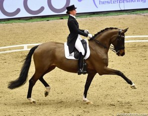 Agnete Kirk Thinggaard and Orthilia at the 2018 CDI Herning :: Photo © Ridehesten