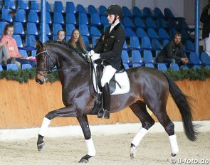 Blue Horse Emilio (by Escolar x Lauries Crusador xx):: Photo © LL-foto