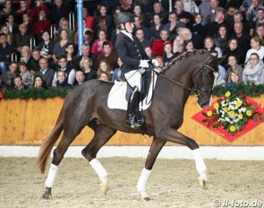 Wibke Hartmann-Stommel and Sezuan's Donnerhall at the PS Stallion Show in February 2018 :: Photo © LL-foto