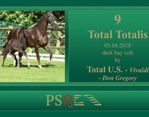 Total Totalis (by Total U.S. x Vivaldi x Don Gregory)