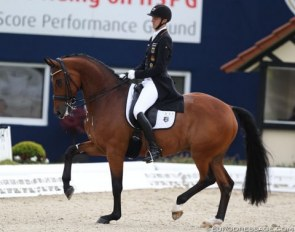 Rothenberger and Cosmo at their only CDI of 2018 so far, the CDI Hagen in April :: Photo © Astrid Appels