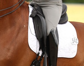 Dressage horse ridden with a heart rate monitor :: Photo © Astrid Appels