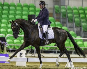 Catherine Smith and Quendrix win the 4-year old division and champion of champions' title at the 2019 New Zealand Young Horse Championships :: Photo © Libby Law