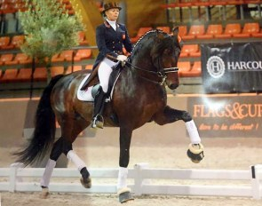 Internationally competed Grand Prix horse Mango Jacaro