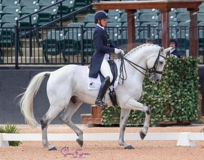 Adrienne Lyle and Harmony's Duval at the 2019 CDI Tryon :: Photo © Sue Stickle