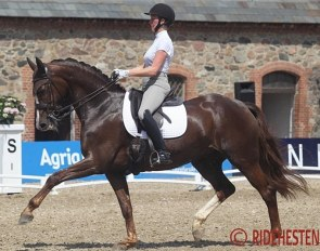 Julie Dyrgaard and her home bred Ryvangs Damon Dione  (by Damon Hill x Come Back II) :: Photo © Ridehesten