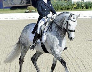 Grand Prix schoolmaster Ruby Star