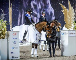 Wise Guy winning at the Sweden International Horse Show :: Photos © Rosita Dahlberg