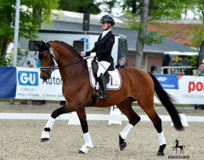 Ballando (by Benicio x Le Primeur) is one of the horses, who is going to the United States. Among many great results, he got a top placing at the 2019 German Bundeschampionat with Eva  :: Photo © Equitaris