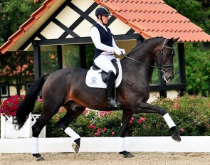 Frederic Wandres and Zomancier (by Zonik x Furst Romancier x Diamond Hit)