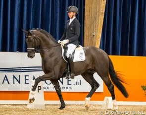 Hans Peter Minderhoud and Taminiau at the second leg of the 2019-2020 KWPN Stallion competition circuit :: Photo © Digishots