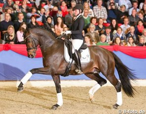 Lisa Wernitznig and Escamillo at the 2019 Oldenburg stallion parade in Vechta :: Photo © LL-foto