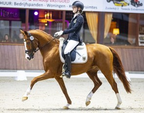 Tropensonne (by Totilas) at the 2019 CDI Exloo