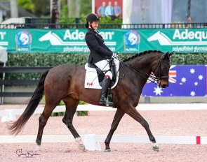 Canadian Paralympian Lauren Barwick of Reddick, FL, brought Sandrino all the way to the FEI level after less than two months of training as a para-dressage mount :: Photo © Sue Stickle