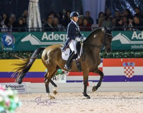 Katherine Bateson Chandler and Alcazar at the 2020 CDI Wellington :: Photo © Sue Stickle