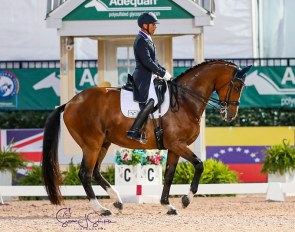 Steffen Peters and Suppenkasper at the 2020 CDIO Wellington :: Photo © Sue Stickle