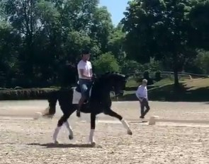 Edward Gal riding Toto Jr at the team training session in Ermelo with Alex van Silfhout