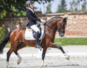 My Sandgren and Twenty Two at the 2019 European Pony Championships