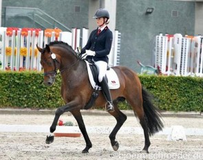 Anna Weilert and Dante's Stern at the Bundeschampionate qualifier in Neustadt/Dosse :: Photo © Bjorn Schroeder