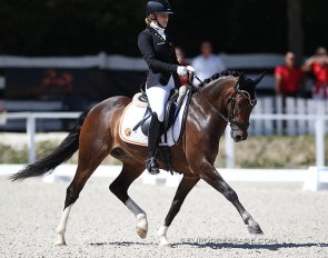 N-Constantino van de Bolkerhoeve at the 2020 European Pony Championships :: Photo © Astrid Appels