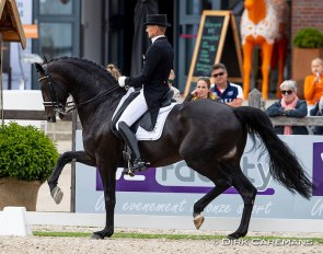 Edward Gal and Zonik at the 2019 Dutch Dressage Championships :: Photo © Dirk Caremans