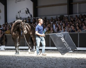 Tristan Tucker demonstrating the TRT method at a clinic in The Netherlands