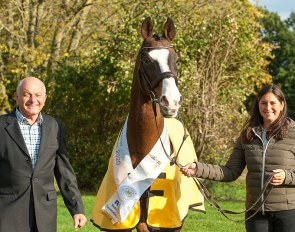 Hannoveraner Stallion of the Year 2020: Forsyth FRH with owner Holger Baum and Franziska Baum-Gundlach
