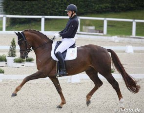Frederic Wandres and the 7-year old Harrods at the first selection trial in Warendorf in September :: Photo © LL-foto