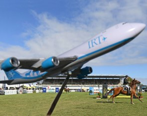 IRT, the International Horse Transport company, flying world wide