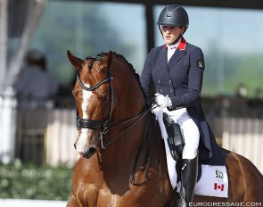Brittany Fraser-Beaulieu and All In at the 2020 CDI Wellington :: Photo © Astrid Appels