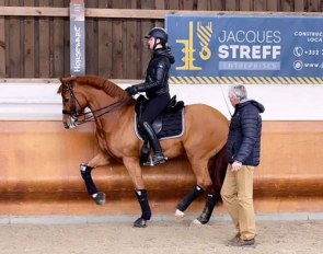 Swedish Under 25 rider Nathalie Wahlund and Cerano Gold training with Morten Thomsen at Mandy Zimmer's Windhof in Luxembourg