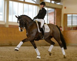 Die Lütte (by Casall x Calido) - Successful at M-level and ready for the small tour