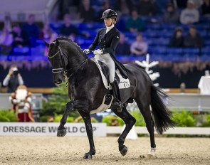 The Grand Prix stallion Desperado is one of the most talented Dutch dressage stallions at this moment! The dam of his daughter Naberlina passed the mare test with several 8s and is sired by the valuable breeding stallion San Remo.