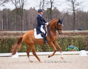 Zoe Kuintjes and Don Clorentino des Paluds at the 2021 KNHS Dutch Talentplan meeting in Ermelo :: Photo © Digishots