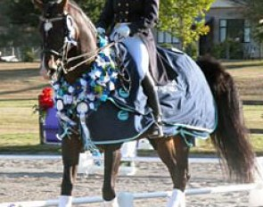 Jody Hartstone and Landioso win the 2006 New Zealand Dressage Championships