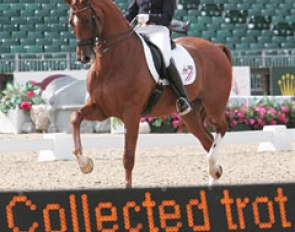Big scores in the Grand Prix for Adelinde Cornelissen and Parzival