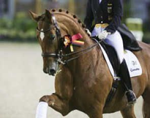 Nadine Capellmann and Elvis at the 2010 CDIO Aachen :: Photo © Astrid Appels