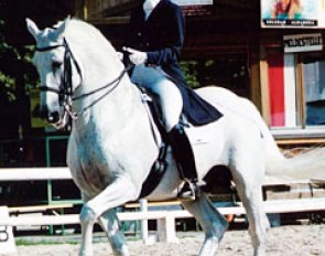 Zsofia Dallos competing her father's stallion Aktion