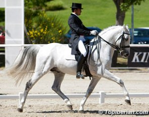 Jose Antonio Garcia Mena and Norte at the 2013 CDI Madrid :: Photo © Top Iberian