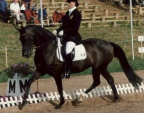 Hannelore Volders on Arastou S. This German bred pony by Diplomat was the 1995 and 1996 Bundeschampion under Andrea Tietze