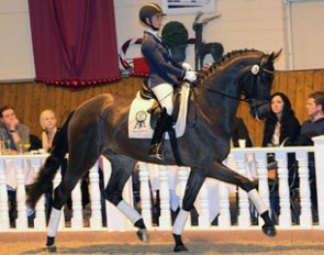 Eva Möller aboard Bluetooth, the dressage price highlight of the 2013 PSI Auction