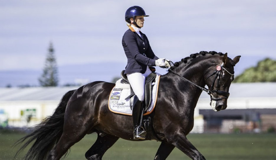 Holly Leach on HP Fresco at the 2018 New Zealand Young Horse Championships :: Photo © Libby Law